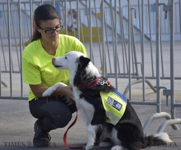 A rescue dog puts her paw on her handler shorty before departing on a rescue mission following an earthquake in central Italy on 24 August. SOS Malta deployed SARK9 unit overseas for the first time. Photo: Mark Zammit Cordina