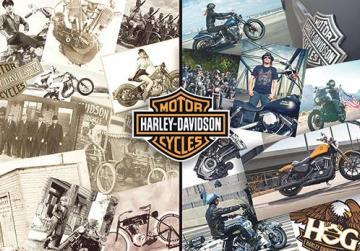 Harley Davidson Origin >> Harley Davidson The Greatest Story On Two Wheels