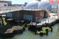Plastic waste: floating parks made from it could unite communities to tackle pollution