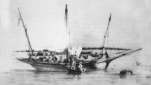 Ship transporting cumin.