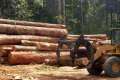 Message to the EU: stop fuelling devastation in the Amazon