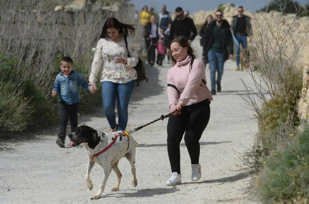 A lady tries to control one of the dogs from the Island Sanctuary in Delimara during a public dog walk on April 8. Photo: Matthew Mirabelli