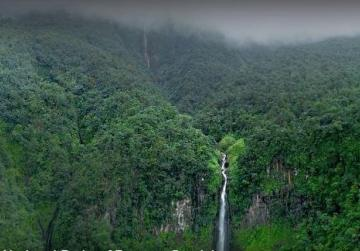Watch: A national park of France in Guadeloupe (ARTE)
