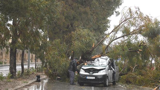 Dan Udrea died tragically yesterday when a tree collapsed on his car. The severely damaged car in Triq Notabile in Mrieħel. Photo: Jonathan Borg