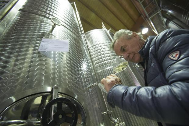 Francesco Drusian smells a sample from a Prosecco container at the bottling chain factory of the Drusian vineyard house
