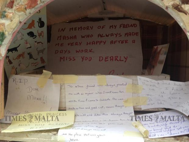 Messages from friends of Masha the cat are placed in the kennel where Masha used to live on May 31. Masha lived in Valletta and was known to locals and passers-by alike. She was put down last month. Photo: Chris Sant Fournier