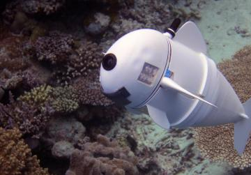 If you want to find Nemo, you may need SoFi, the robotic fish