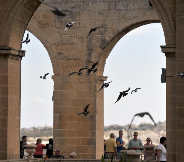 Pigeons fly through the arches of the Upper Barrakka Garden in Valletta on September 21. Photo: Chris Sant Fournier
