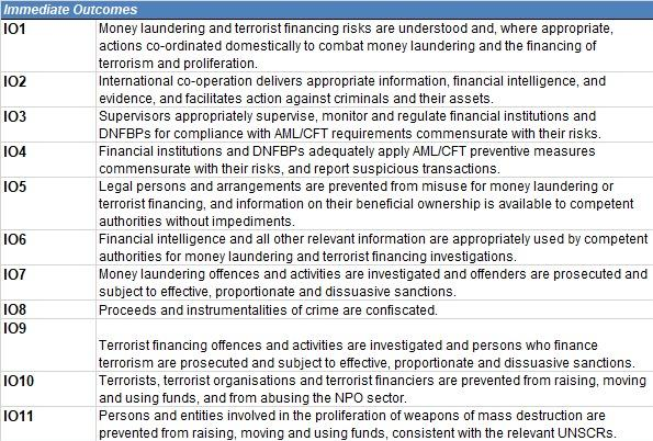 The 11 'immediate outcomes' assessed by the FATF.