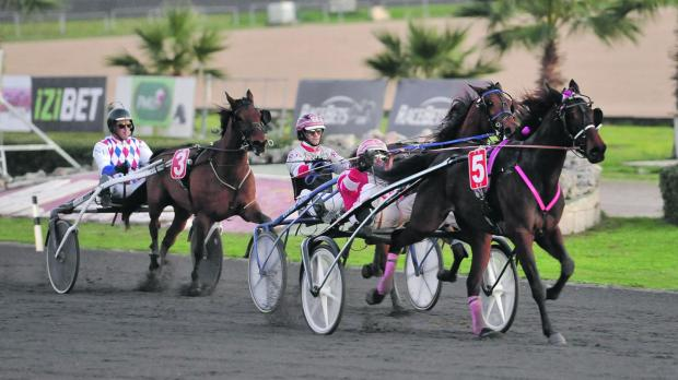 M.T. Gogogirl on its way to victory at Marsa on Sunday. Photo: Chris Sant Fournier