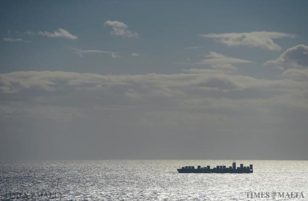 A large container ship makes its way towards the Freeport on January 18. Photo: Matthew Mirabelli