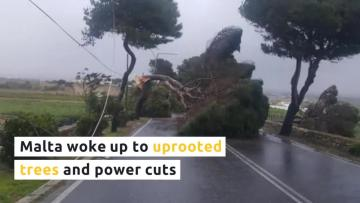 Destruction across Malta as gale-force winds batter islands | Video: Sarah Carabott