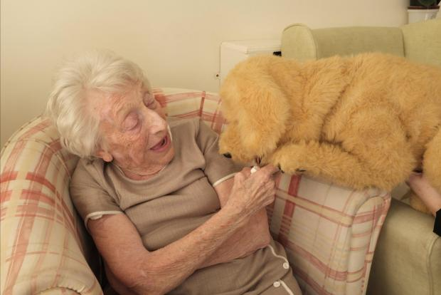 Elsie Proctor, aged 94, interacts with Biscuit the robotic dog at Templeman House Residential and Dementia Care Home in Bournemout