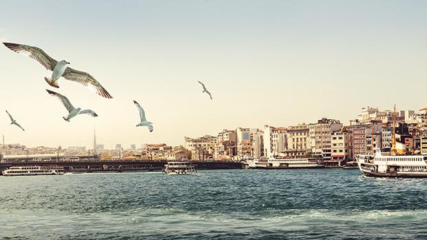 A panorama of Istanbul at sunset, with seagulls over the sea.
