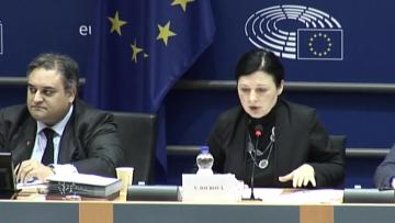 European Commission does not endorse sale of passports, Commissioner says | 'We do not endorse the system,' Vera Jourova said.