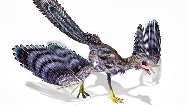 Palaentolog Jerman Temukan Sayap Membatu, Seekor Dinosaurus Terbang