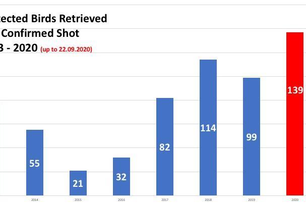 2014 - 2020 statistics, according to the organisations. Source: BirdLife Malta