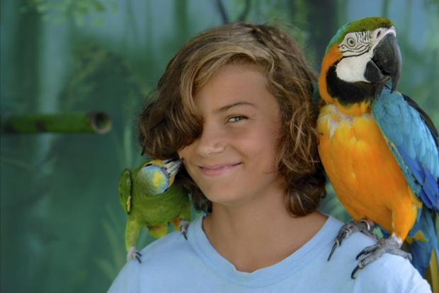 A daily parrot presentation offers visitors the chance to better understand and appreciate the animals.