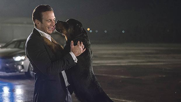 Will Arnett and Ludacris (who lends his voice to the dog) work paw in hand in Show Dogs.