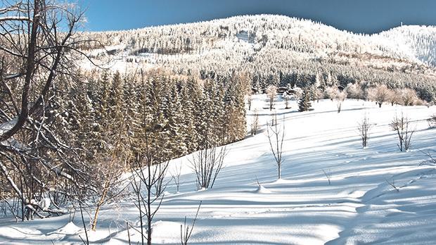 View of the snowy winter mountain landscape Pustevny-Beskydy/Czech Republic. Photos: Shutterstock