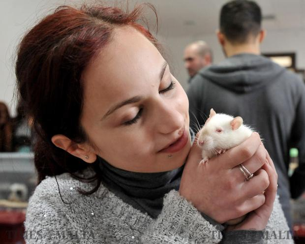A girl kisses her pet rat at the first rodent show held at the St Joseph home in Santa Venera on February 19. Photo: Chris Sant Fournier