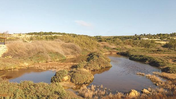 One of three lagoons found  at the Natura 2000 site.  Photo: Nature Trust − FEE Malta