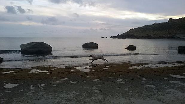 Marsalforn. Photo: Elinor Vella
