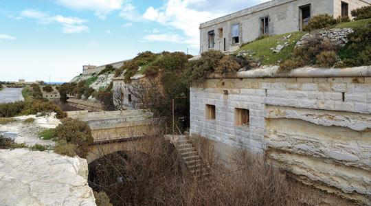 Four 38-ton guns are in the dilapidated Fort Delimara but, although they are the only surviving examples in the world, they sit in a metre of pig excrement and slurry. Photo: Chris Sant Fournier.