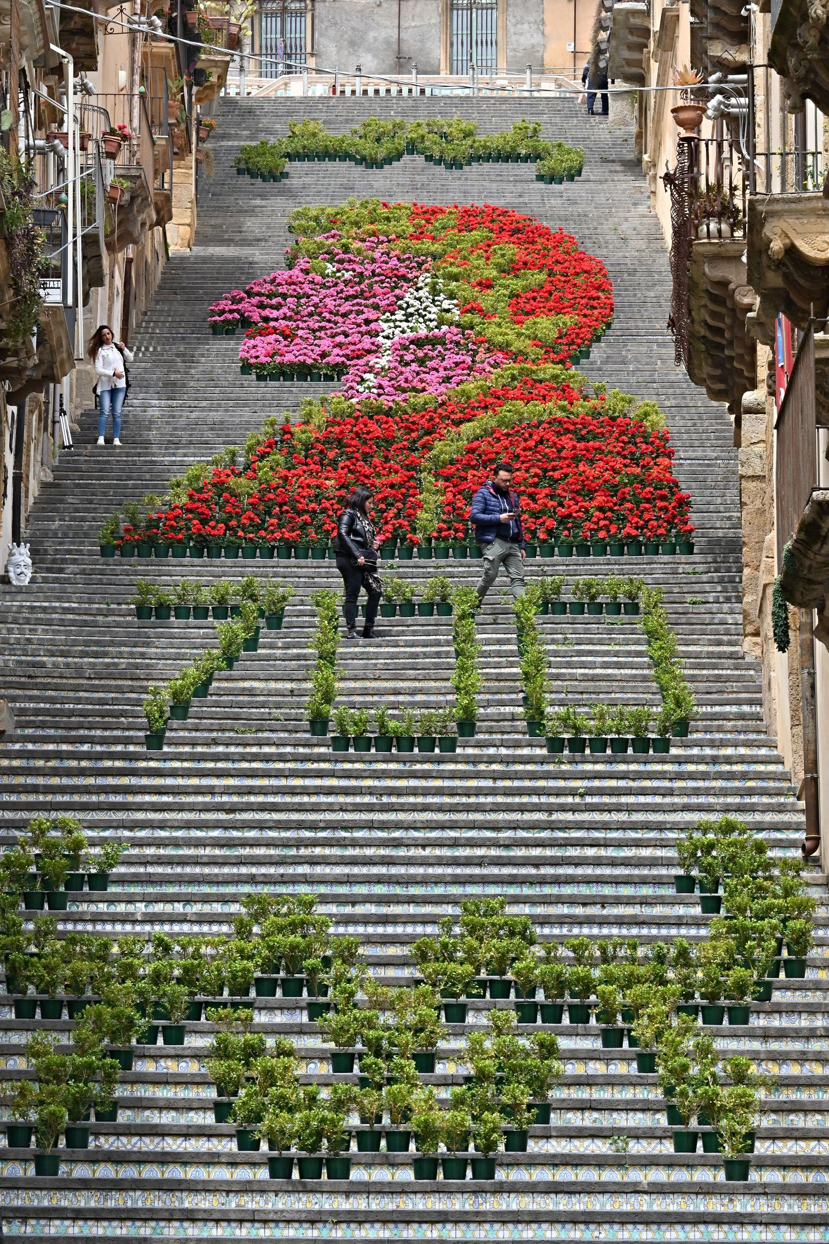 A view shows the Steps of Santa Maria del Monte with flowers marking the 700th anniversary of Italian poet Dante Alighieri, in Caltagirone, Sicily, on April 28, 2021. Photo: Andreas Solaro/AFP
