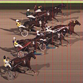 The photo-finish of the Prix De Vincennes final, yesterday.
