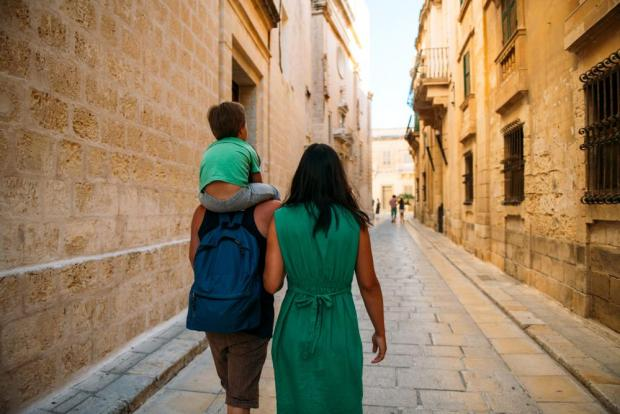By studying why Malta has low fertility rates, the government would be in a better position to design policies that encourage families to have more children.