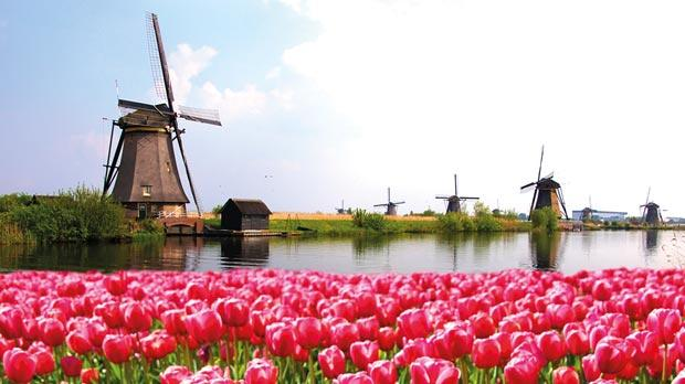 netherlands economy essay Facts about the netherlands the population, geography, history and economy.