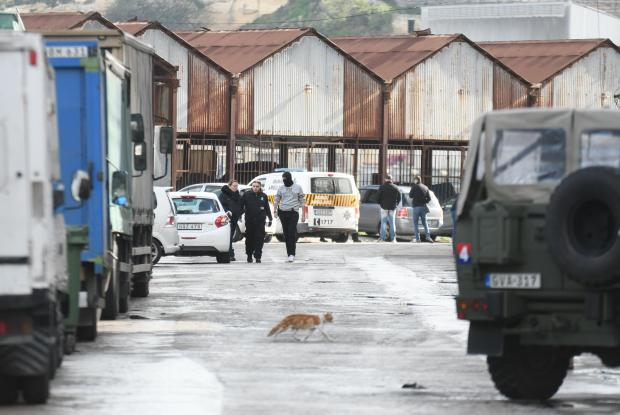 A cat scurries across the road during a raid in Marsa on Monday, during which 10 people were arrested in connection with Daphne Caruana Galizia's murder on December 4 Photo: Jonathan Borg
