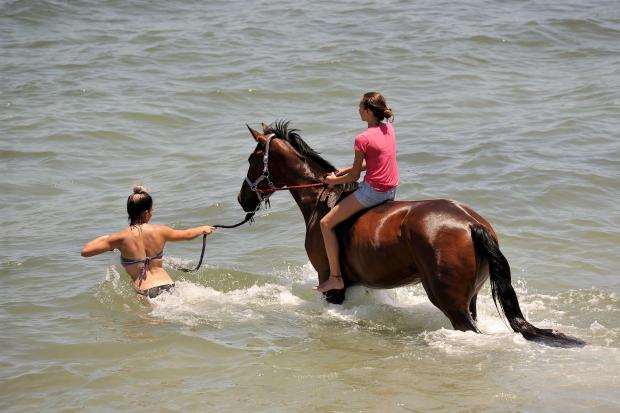 You can lead a horse to water, and instead of trying to make it drink, treat it to a nice swim, as these two women did at Bahar Ic-Caghaq on July 17. Photo: Chris Sant Fournier