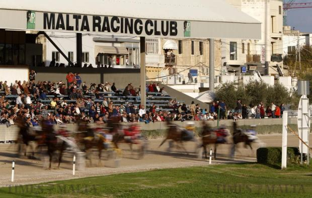 Horses and their drivers rush past the spectator stand during the Premier Class horse race at Marsa Racetrack on December 13. Photo: Darrin Zammit Lupi