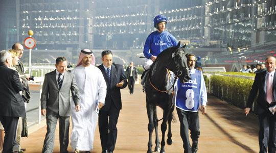 Dubai Stables Tour