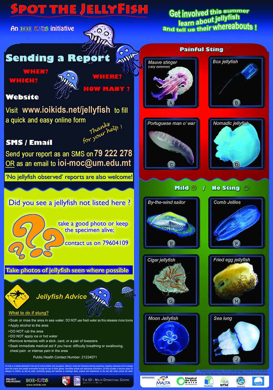 The jellyfish leaflet