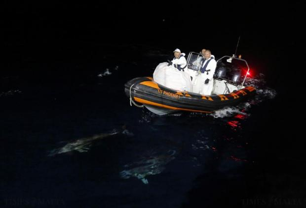 Dolphins swim ahead of a Migrant Offshore Aid Station (MOAS) RHIB (rigid hulled inflatable boat) as it returns alongside the MOAS ship MV Phoenix while transferring rescued migrants to the Norwegian ship Siem Pilot off the coast of Libya on August 6. An estimated 600 migrants on an overloaded wooden boat were rescued 10.5 miles (16 kilometres) off the coast of Libya by the international non-governmental organisations Medecins san Frontiere (MSF) and MOAS without loss of life on Thursday afternoon, according to MSF and MOAS, a day after more than 200 migrants are feared to have drowned in the latest Mediterranean boat tragedy after rescuers saved over 370 people from a capsized boat thought to be carrying 600. Photo: Darrin Zammit Lupi