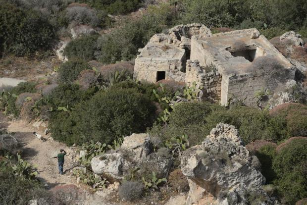 A hunter and his dog walk in the fields under Dingli Cliffs on April 19. Photo: Matthew Mirabelli