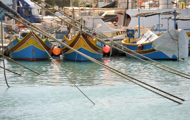 Ropes secure fishing vessels at the Marsaxlokk fishing port on July 26. Photo: Chris Sant Fournier