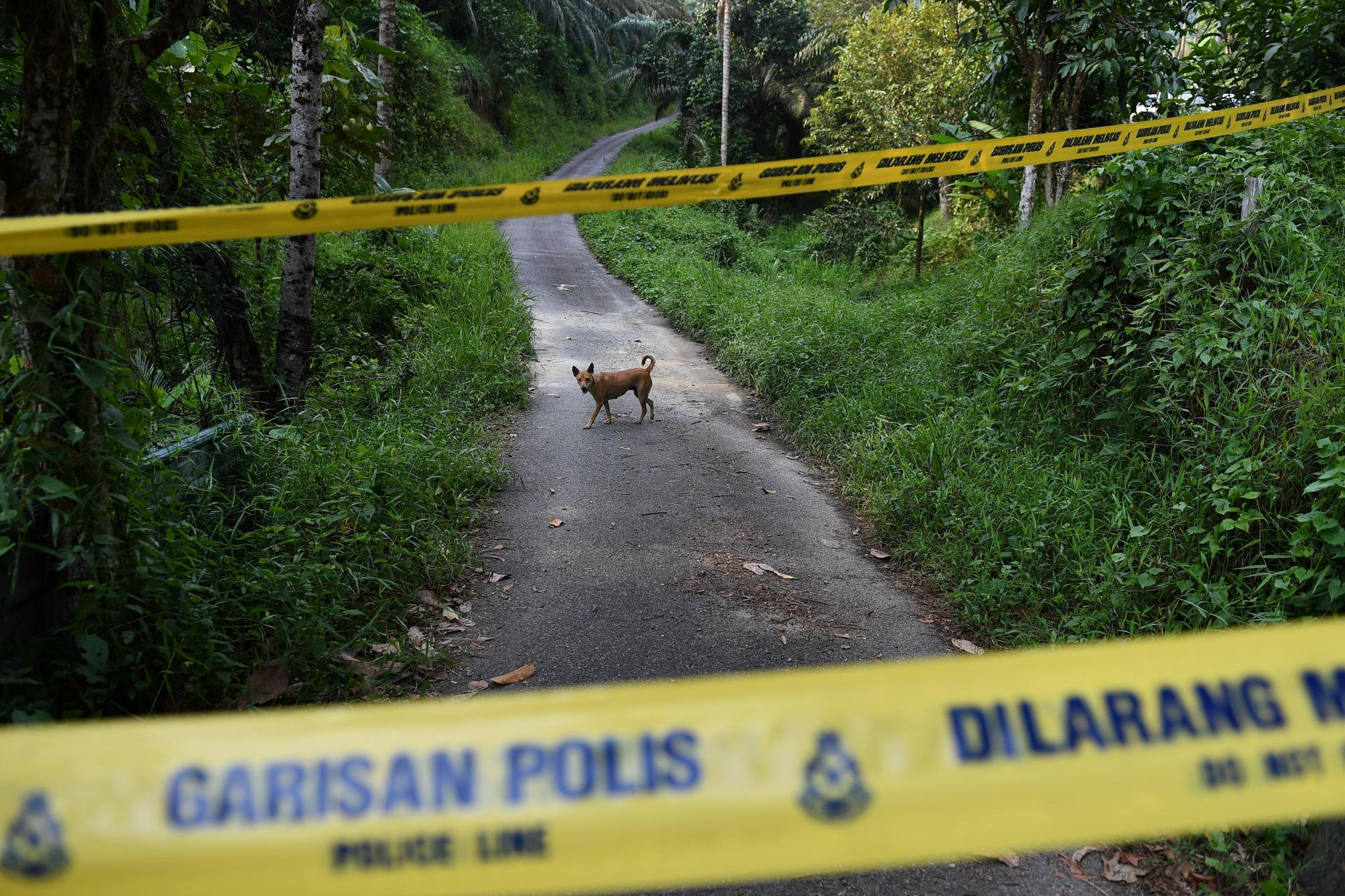 A dog walks behind a police line at an entrance to the Dusun Resort, where Nora Quoirin was last seen. Photo: AFP