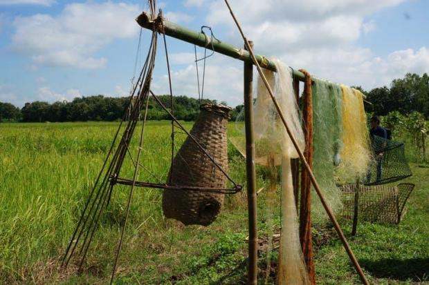 Fishing gear hangs in front of a rice field on Uncle Plien's farm. Philip A. Loring