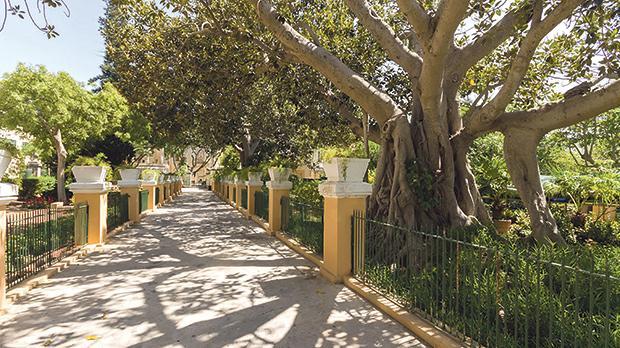 Garden Centre: Guided Visit To Argotti Botanical Gardens
