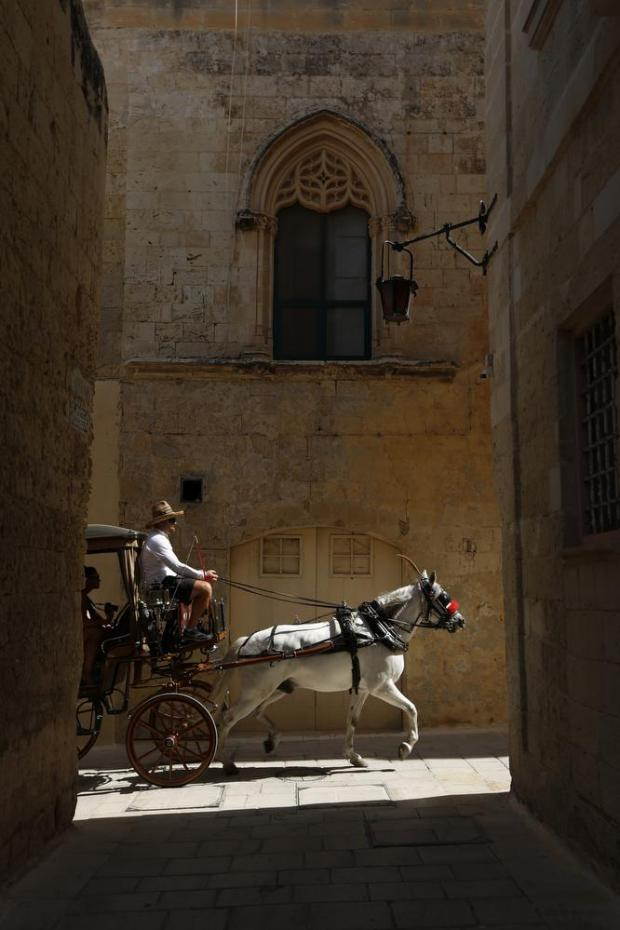 A karozzin (horse-drawn cab) carries tourists through the streets of Mdina on July 13. Photo: Darrin Zammit Lupi