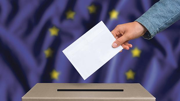 The Labour Party is set to increase its support at next month's European Parliament elections. Photo: Shutterstock