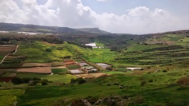 Ġnejna valley. Photo: Antoine Muscat