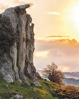 The praying woman. At 25 metres, it is one of the highest megaliths. Photo: Sergio Scolaro