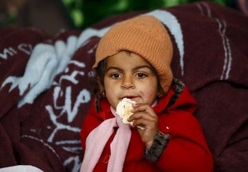 Tens of thousands of Syrians flee as fighting intensifies