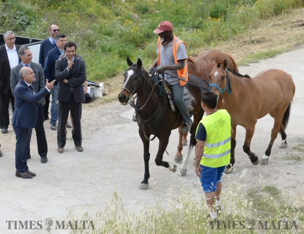 Minister of the Environment, Jose Herrera compliments a man walking his horses through Wied il-Kbir in Qormi on April 2. Photo: Matthew Mirabelli