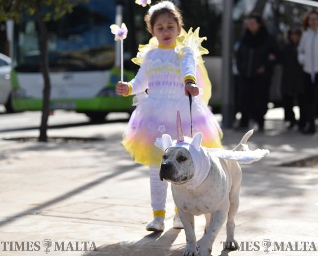 A girl walks her dog in costume during carnival in Valletta on February 11. Photo: Mark Zammit Cordina